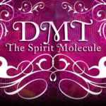 Rick Strassman MD | Researcher on entheogen DMT, who help create a documentary called: DMT: The Spirit Molecule