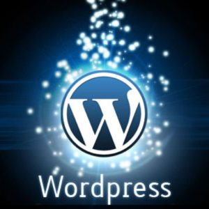 WordPress Website Design Company - WordPress Lessons
