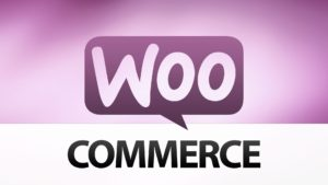 WordPress WooCommerce Developer